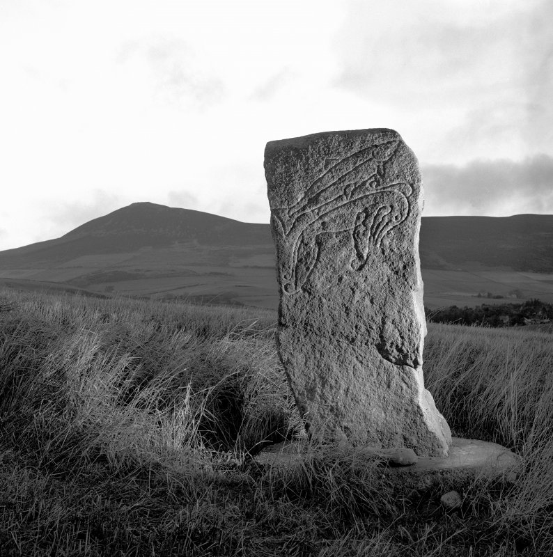 View of face of Craw Stane, Pictish symbol stone