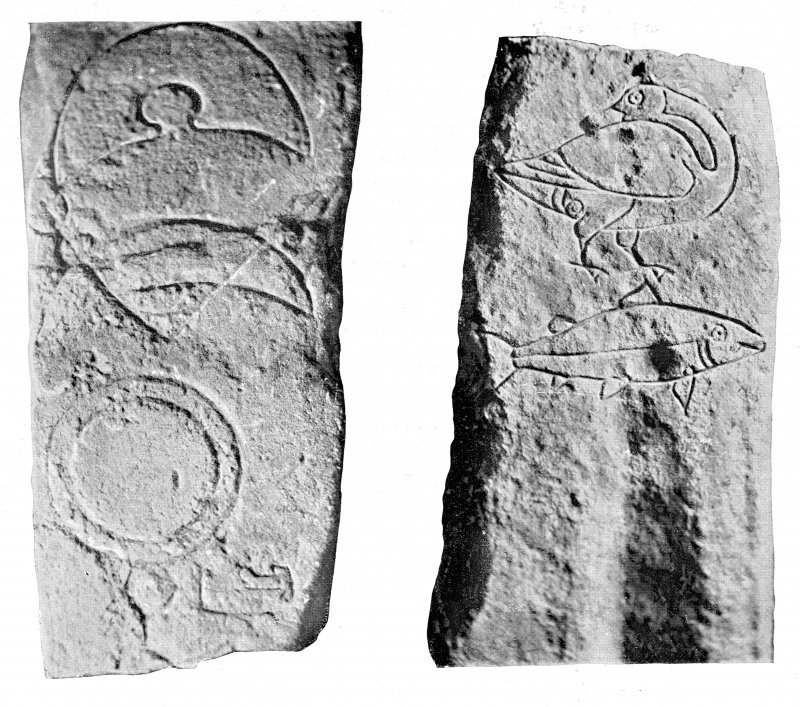 The Pictish symbol stone from Easterton of Roseisle. Allen and Anderson, 1903, p.126, figs 130, 130A.