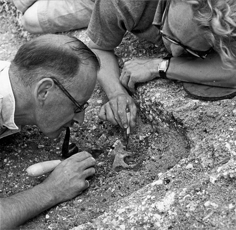 Digital copy of excavation photograph of Hope-Taylor and another excavating a skull.