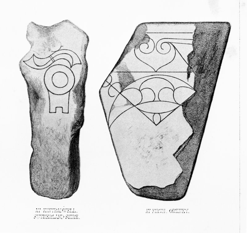 Pictish symbol stone at Firth. From J Stuart, The Sculptured Stones of Scotland, vol. ii, plate civ. Digital copy of detail of D 8768.