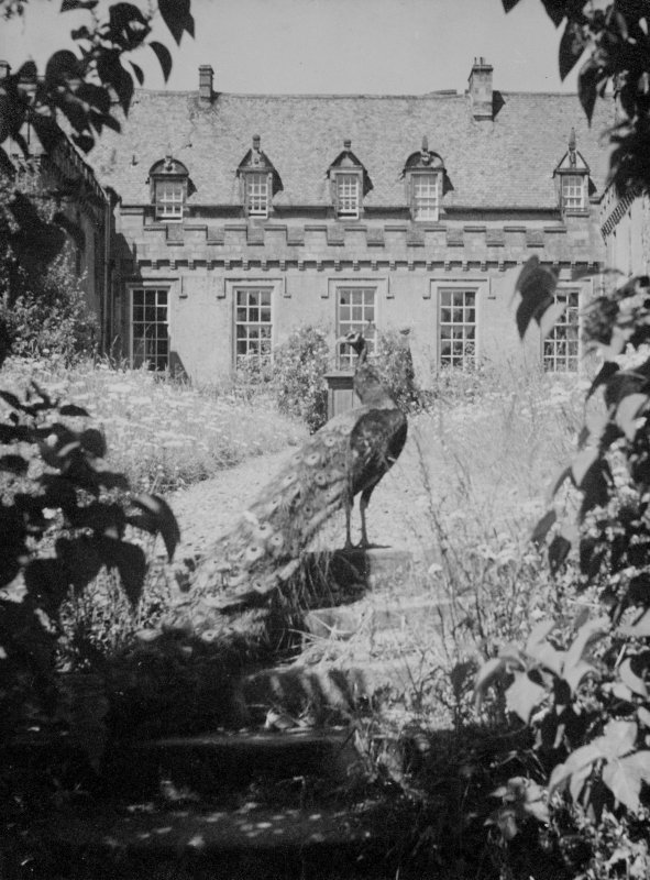 General view of court at the House of the Binns, West Lothian, with peacock in foreground.