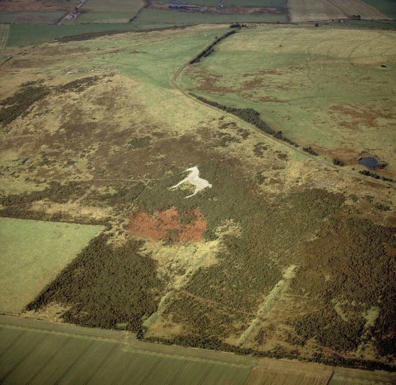 Oblique aerial view centred on the White Horse hill figure, taken from the SSE.