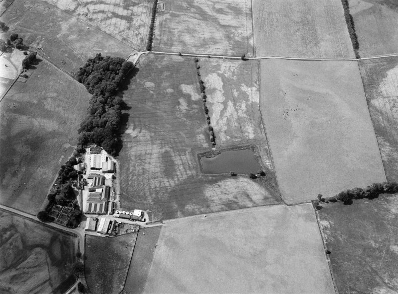 Oblique aerial view centred on the cropmarks of the fort, ring ditch and rig at Mains of Edzell with the farmstead adjacent, looking to the NW.