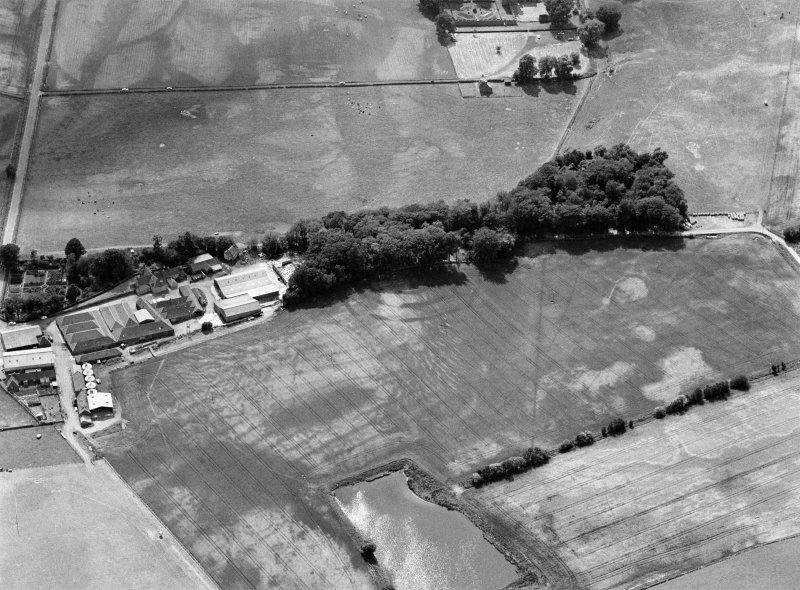 Oblique aerial view centred on the cropmarks of the fort, ring ditch and rig at Mains of Edzell with the farmstead adjacent, looking to the WSW.