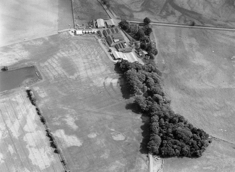 Oblique aerial view centred on the cropmarks of the fort, pits and rig at Mains of Edzell with the farmstead adjacent, looking to the SSE.