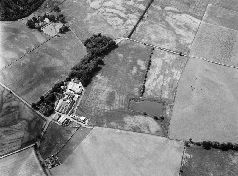 Oblique aerial view centred on the cropmarks of the fort, ring ditch, pits and rig at Mains of Edzell with the farmstead adjacent, looking to the NNW.