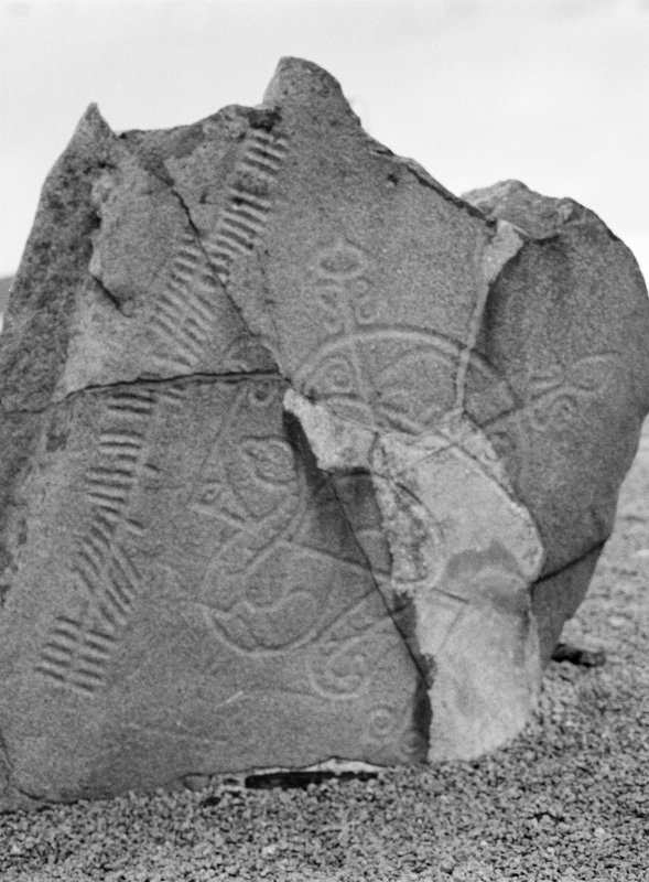 Detail of Brandsbutt ogham inscribed Pictish symbol stone showing a serpent, Z-rod and crescent symbol.