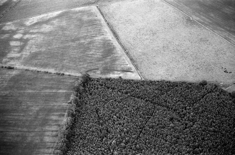 Oblique aerial view centred on the cropmarks of the Roman Temporary Camp at Normandykes, looking to the ENE.