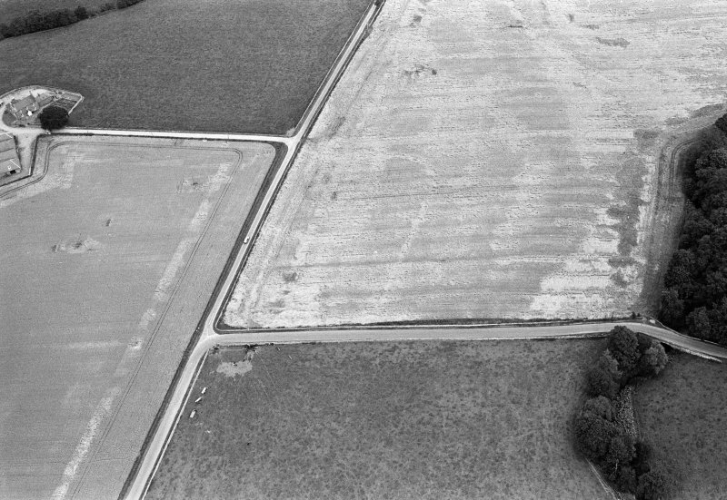 Oblique aerial view centred on the cropmarks of the Roman Temporary Camp at Stracathro, looking to the NE.