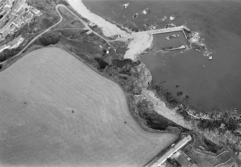 Oblique aerial view centred on the remains of the promontory fort at Castle Rock, Auchmithie with the harbour and coastguard station cottages adjacent, looking to the ENE.