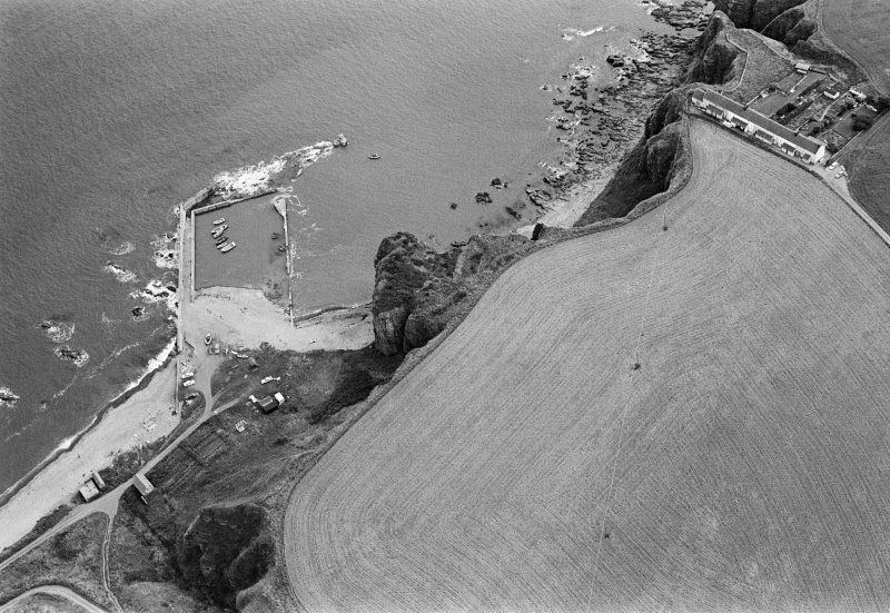 Oblique aerial view centred on the remains of the promontory fort at Castle Rock, Auchmithie with the harbour and coastguard station cottages adjacent, looking to the ESE.
