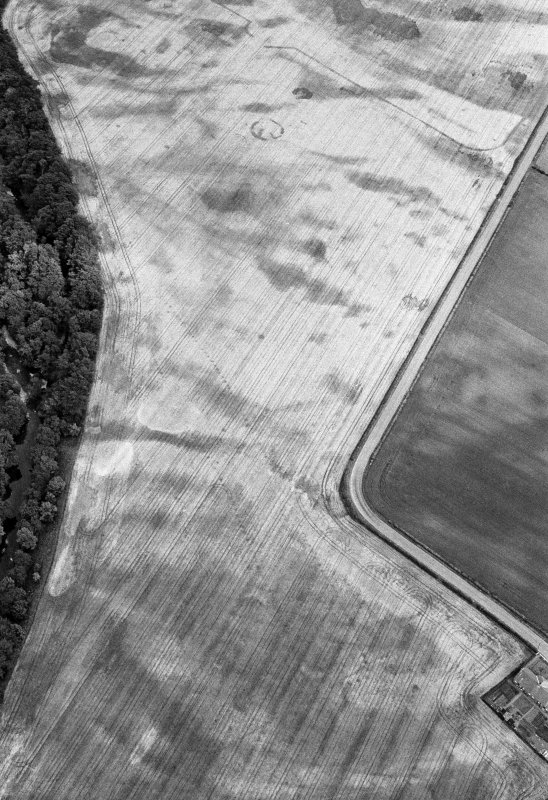 Oblique aerial view centred on the cropmarks of the pit defined cursus, unenclosed settlement, ring ditches, pits and rig with Stracathro Roman Temporary Camp adjacent at Inchbare North, looking to the ENE.