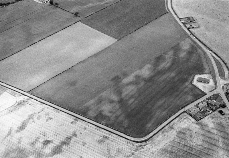 Oblique aerial view centred on the cropmarks of the pit alignment, pit enclosure and rig at Inchbare, looking to the S.