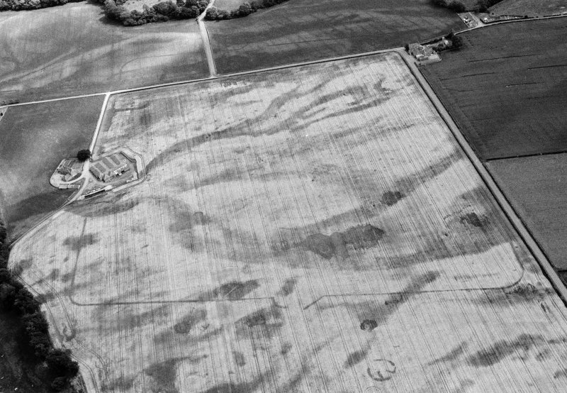 Oblique aerial view centred on the cropmarks of the Roman Temporary Camp, unenclosed settlement, ring ditches and pits at Stracathro, looking to the SE.
