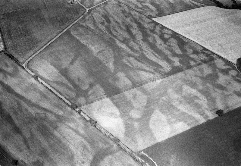 Oblique aerial view of the cropmarks of the pit defined cursus, enclosed cremation cemetery, rectilinear enclosure, ring ditch and rig at Balneaves, looking to the NW.