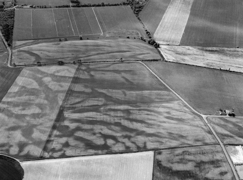 Oblique aerial view centred on the cropmarks of the pit defined cursus, enclosed cremation cemetery, rectilinear enclosure, ring ditch and rig at Balneaves, looking to the S.