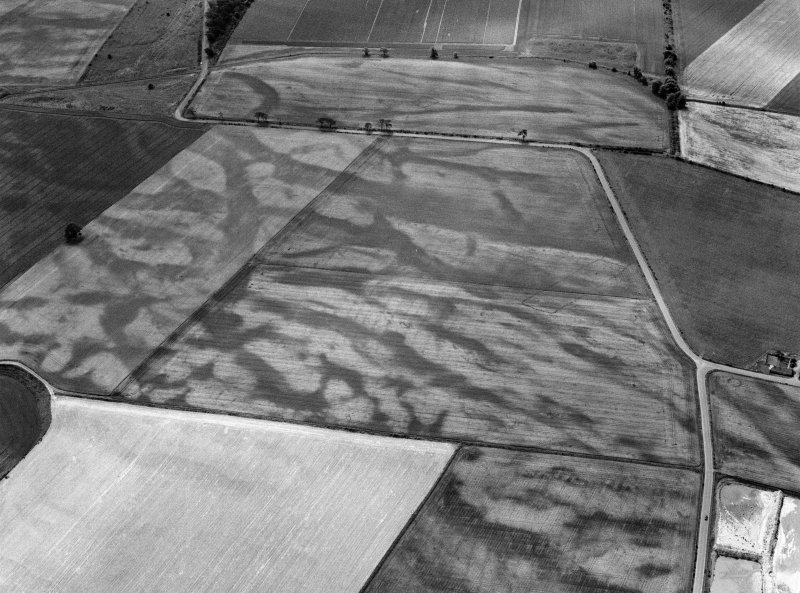 Oblique aerial view of the cropmarks of the pit defined cursus, enclosed cremation cemetery, rectilinear enclosure, ring ditch and rig at Balneaves, looking to the SSE.