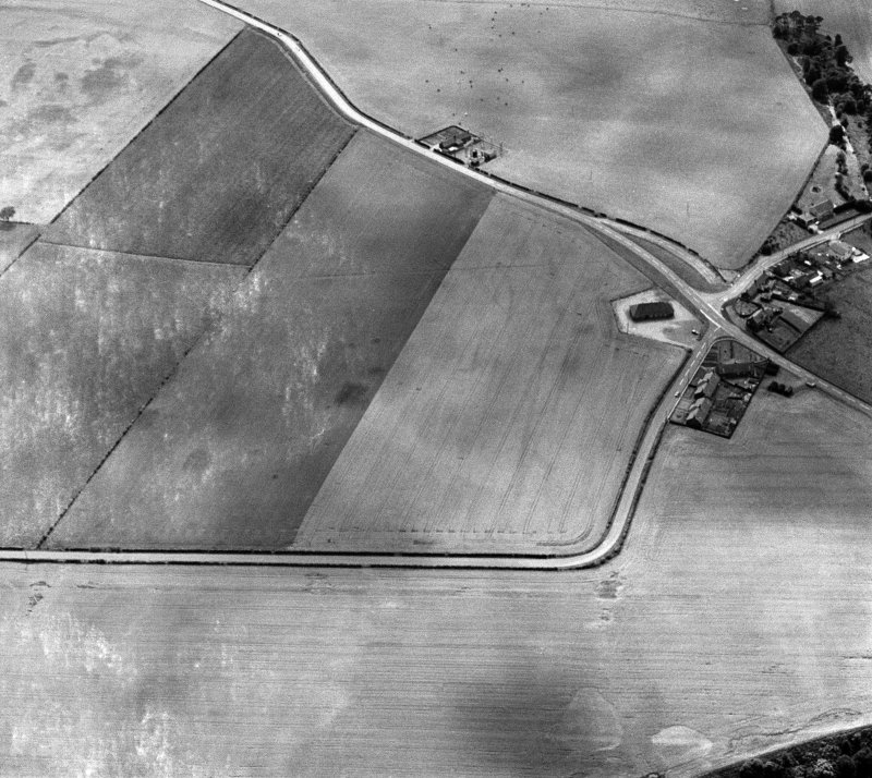 Oblique aerial view centred on the cropmarks of the pit alignment and rig at Inchbare, looking to the SW.