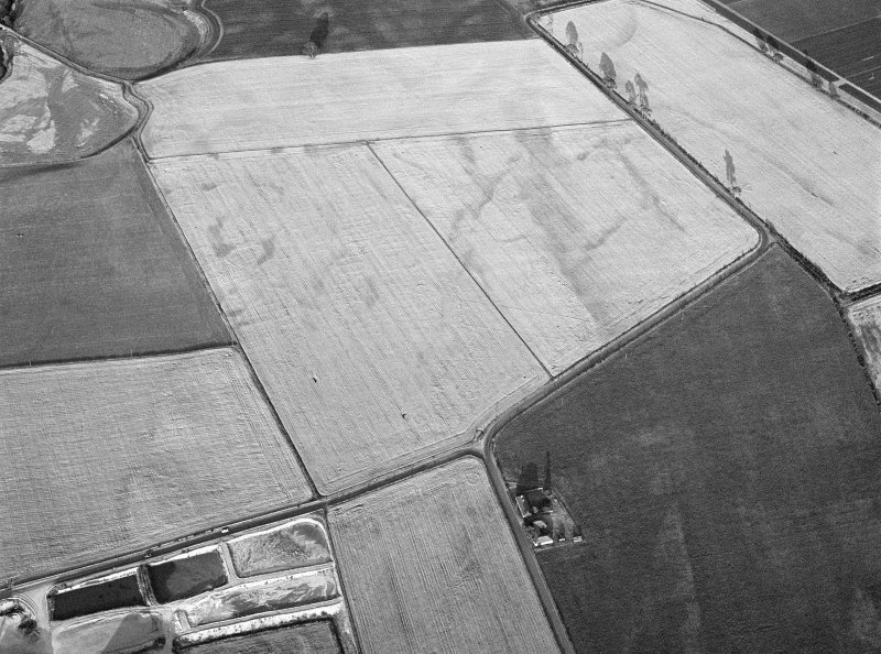 Oblique aerial view of the cropmarks of the pit defined cursus, enclosed cremation cemetery, rectilinear enclosure, ring ditch and rig at Balneaves, looking to the ENE.