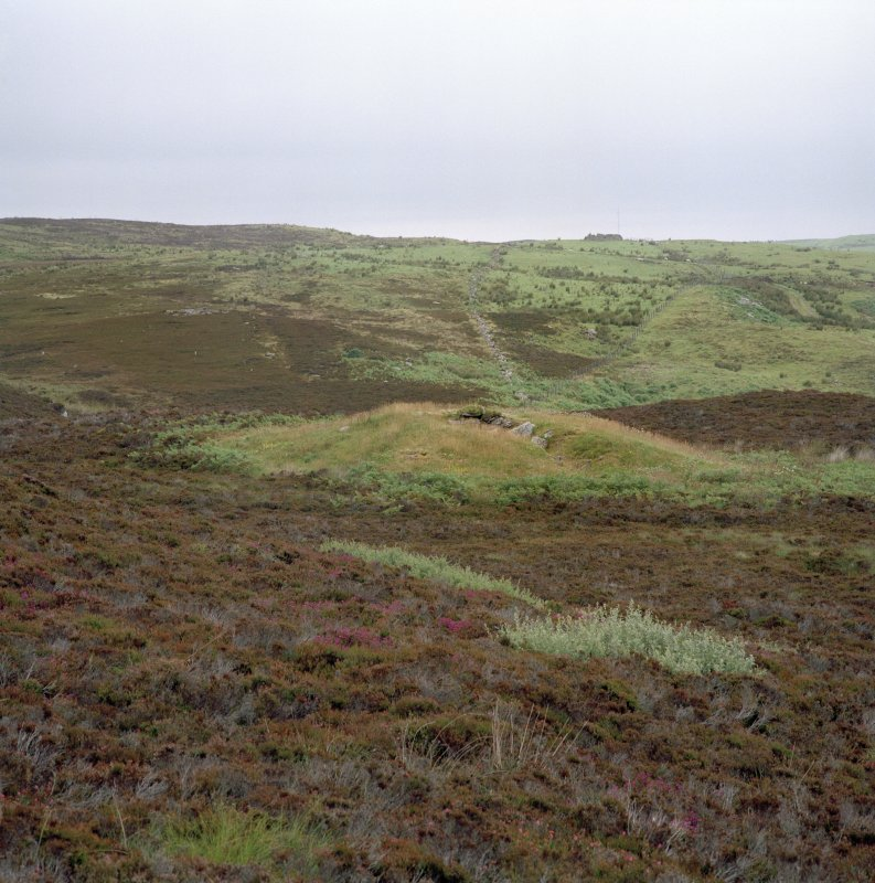 View of chambered cairn from SW. Digital copy of photograph.