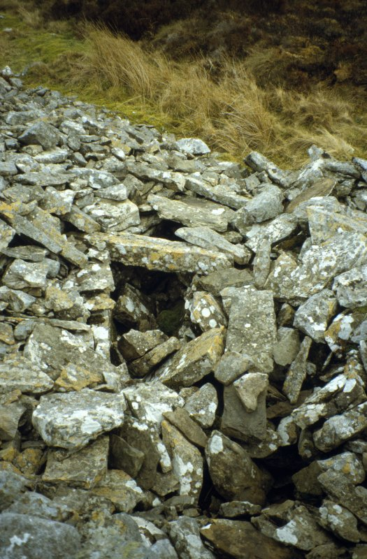 View from the body of the cairn showing the roofed passage roughly midway along the S side.
