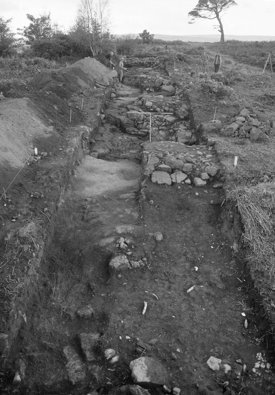 Excavation photographs: Gillies Hill excavation.