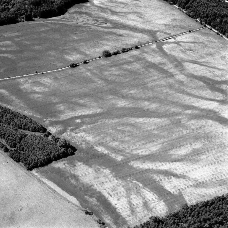 Carsie Mains, oblique aerial view, taken from the E, centred on a complex of cropmark features including possible mortuary enclosures, a pit circle and linear cropmarks.
