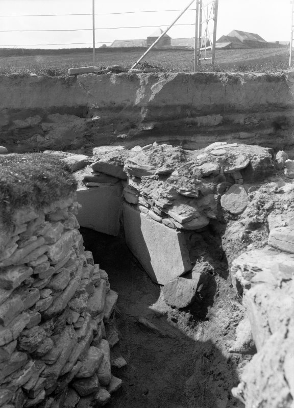 Excavation photograph: Gallery W of hut 7. pl.xx.2.