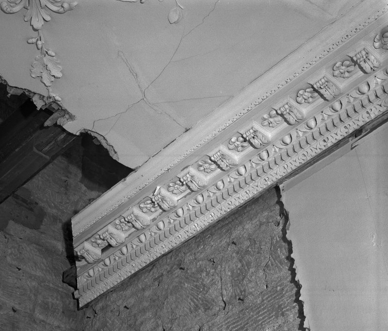 Interior Detail of drawing room cornice.