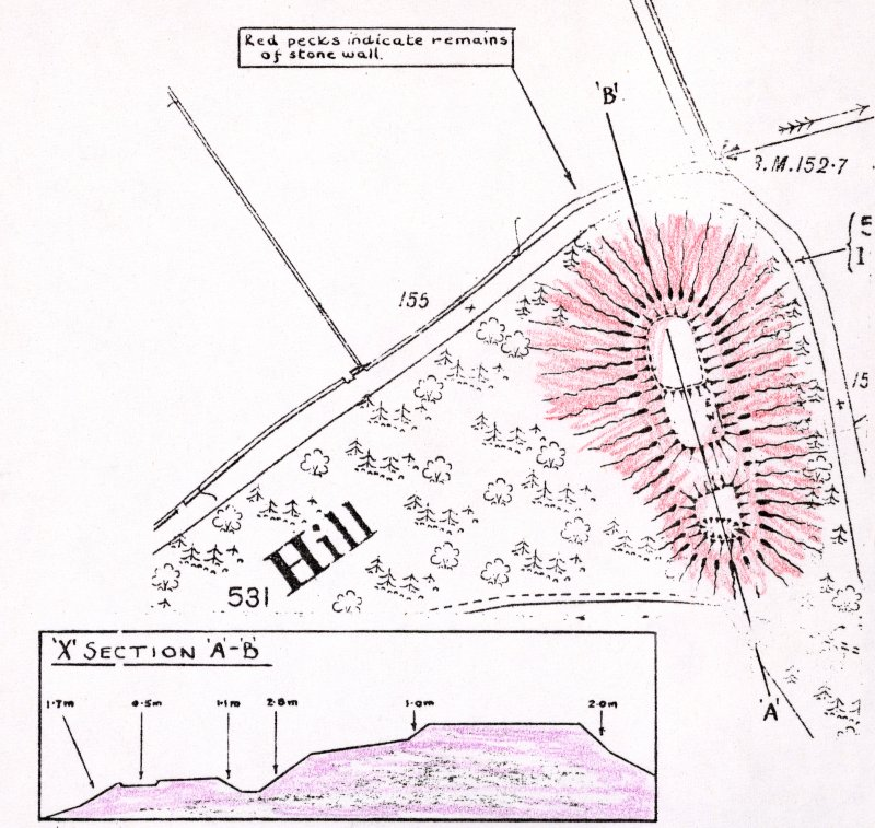 Plan and section of motte-and-bailey (filed in photograph box file)