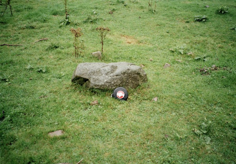 A ringstone on the floor of the quarry to the W of Tomnaverie (Bradley 'Monolith 5')