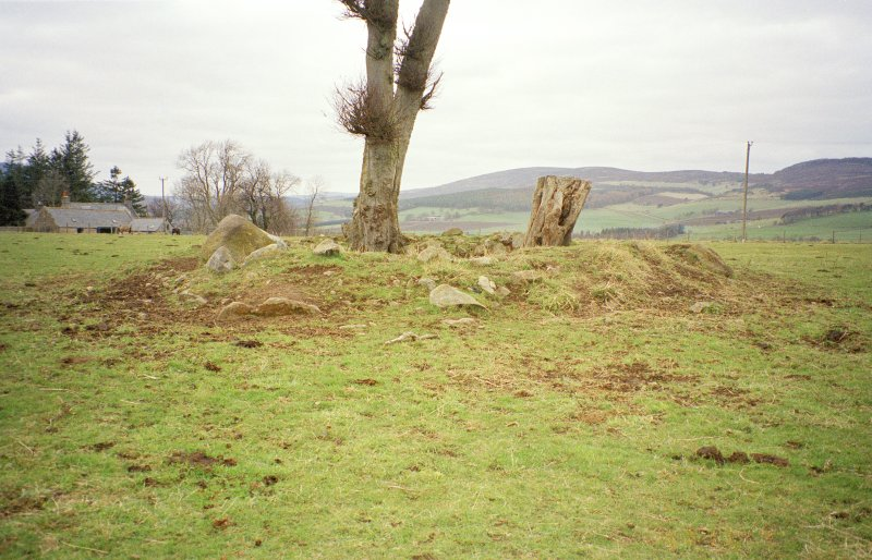 The ring cairn from the ESE