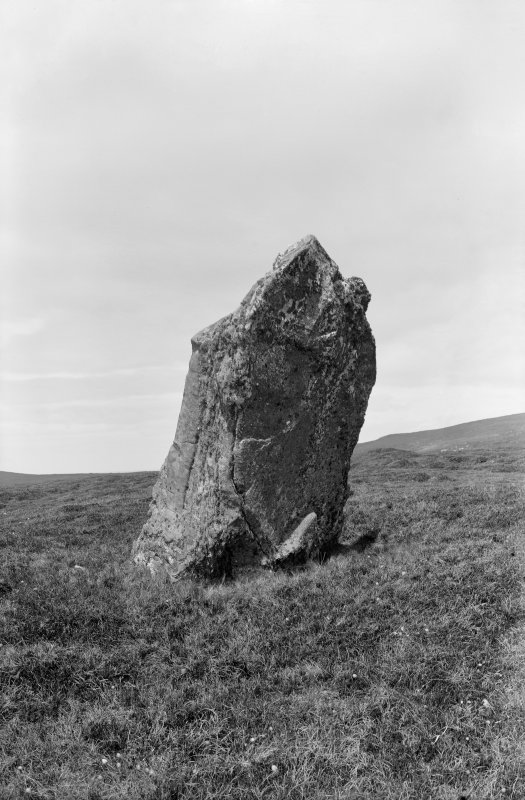 General view of standing stone