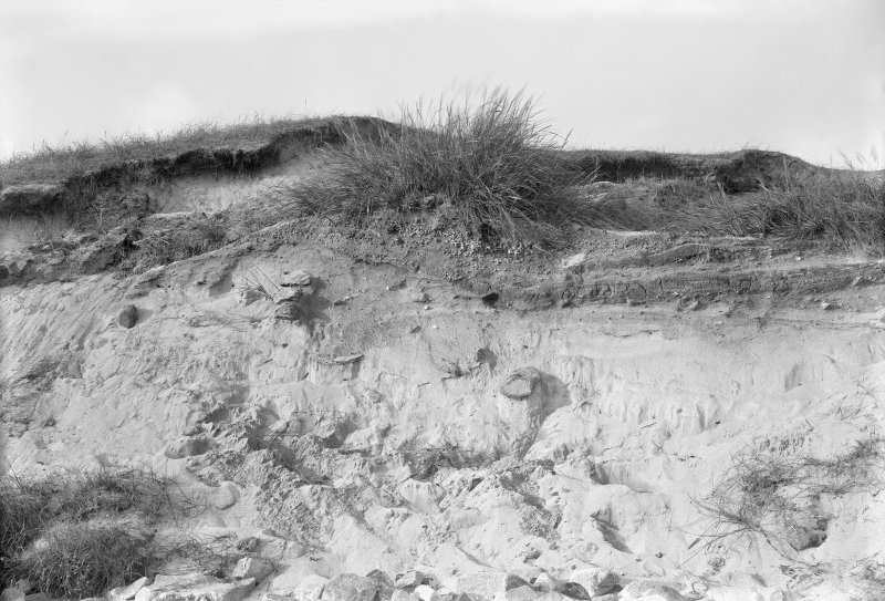 Detail of section or erosion face through sand hill including shell midden