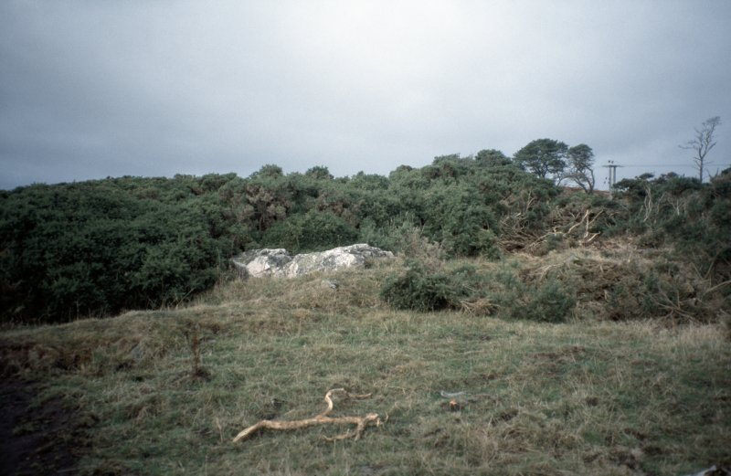 Copy of slide (H 93793cs) of recumbent stone circle before clearance of vegetation.