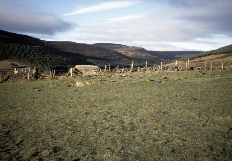 Copy of colour slide (H 93807cs) showing general view of recumbent stone circle.