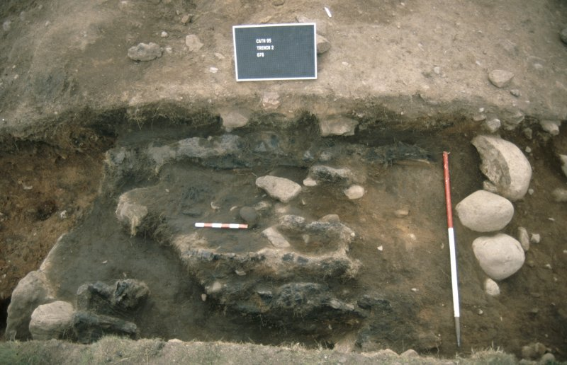 Excavation photographs: Film 21 from the 1995 season at Brown Caterthun. Trench 2, Rampart E: burnt timber deposit 6 from the north-east (outer rampart face to left). Note the rabbit burrow running obliquely through the timbers to the left of the small scale.