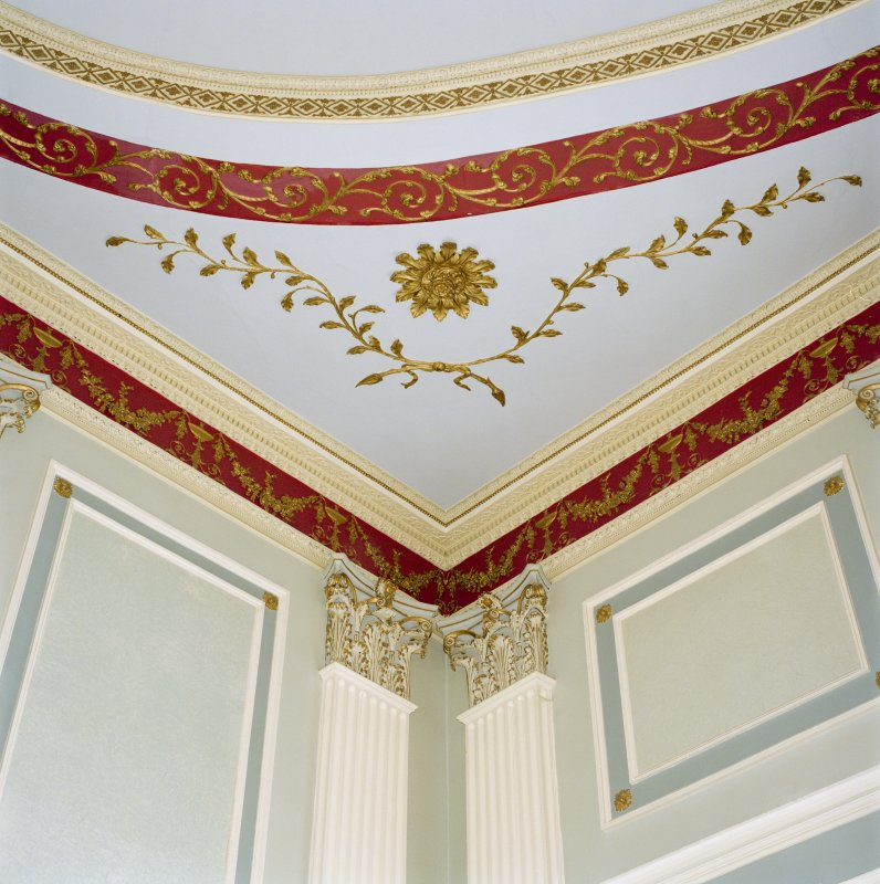 Interior, 1st floor, assembly room, detail of corner of ceiling showing pilasters and cornice