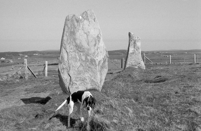 View of excavation at Callanish.