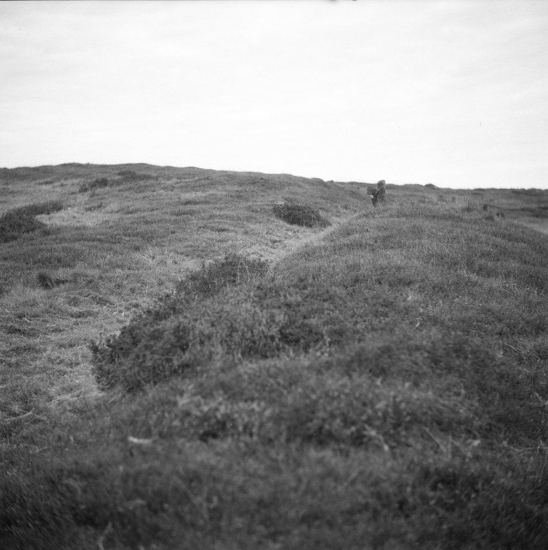 View of Henge and cairn prior to excavation.