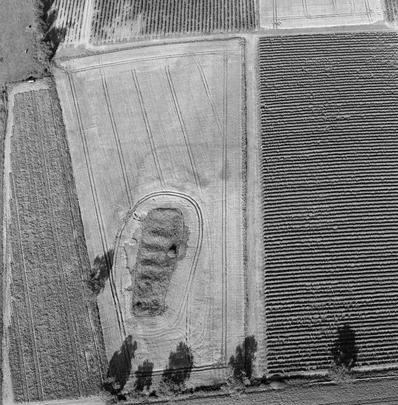 Steeds Stalls, Gourdie, oblique aerial view, taken from the SW, centred on the cropmarks of the Roman Temporary Camp.