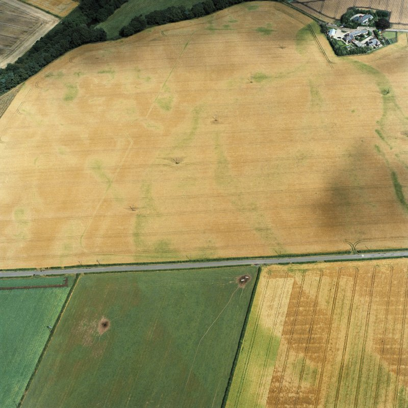 Oblique aerial view centred on the cropmarks of the Roman temporary camp, pits and ring-ditch, taken from the SW.