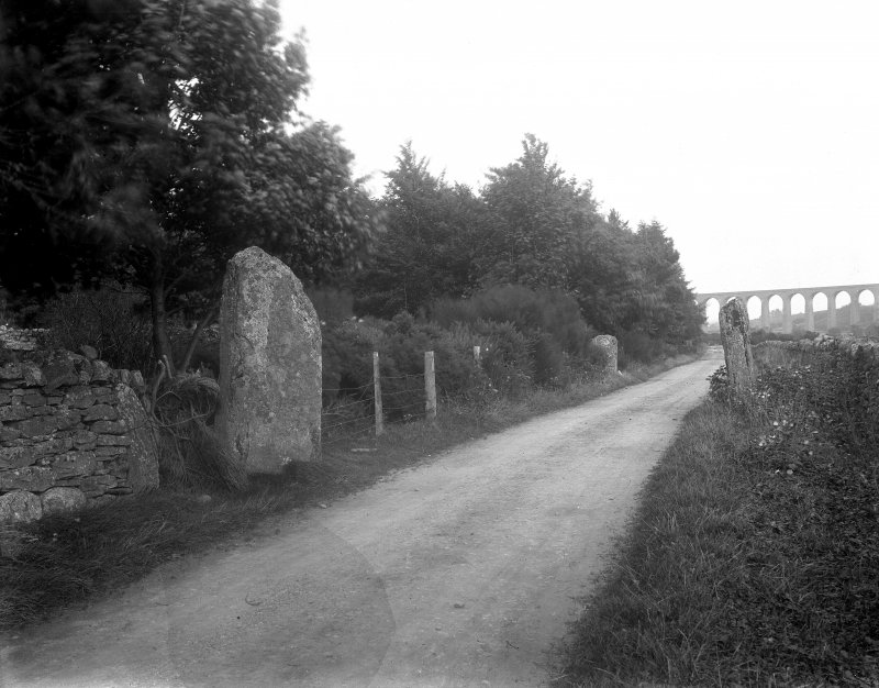 View of standing stones adjacent to road.