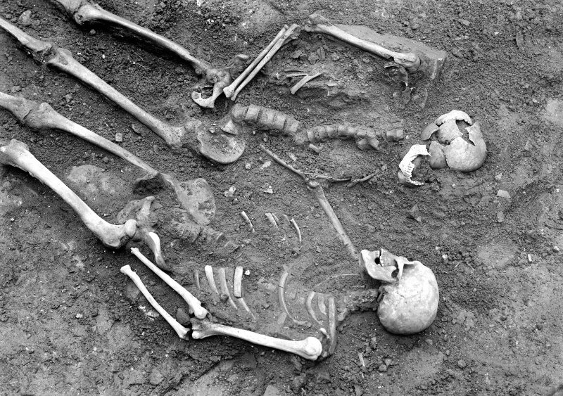 Photograph of two skeletons found in 1960 castle excavations.