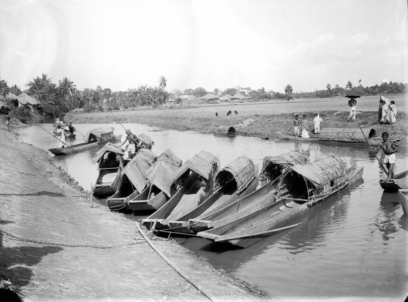 Group of moored river canoes. Unknown location, possibly on the Salt Lakes to the east of Kolkata or towards the Sundarbans.