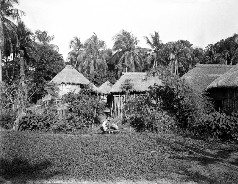 Village scene, Bengal.  Unknown location, possibly near the Salt Lakes to the east of Kolkata or south towards the Sundarbans.