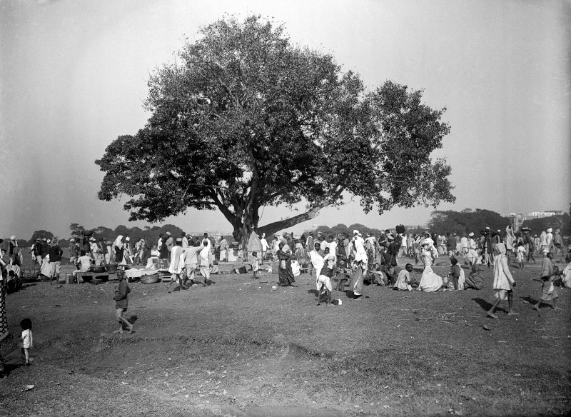 Group gathered under tree on the Maidan, Kolkata.