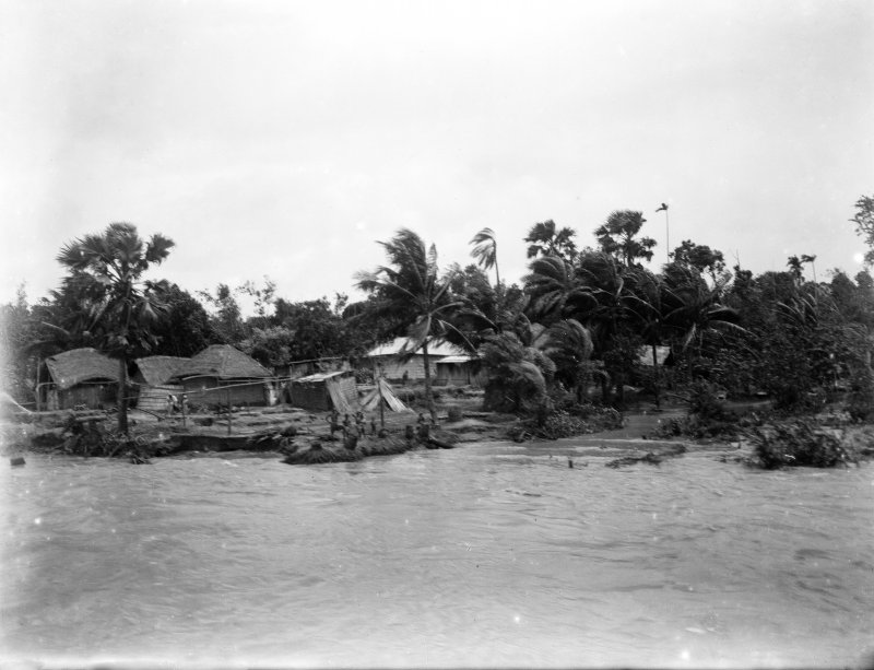 Village, view taken from a boat.  Unknown location, possibly the Salt Lakes to east of Kolkata or south towards the Sundarbans.