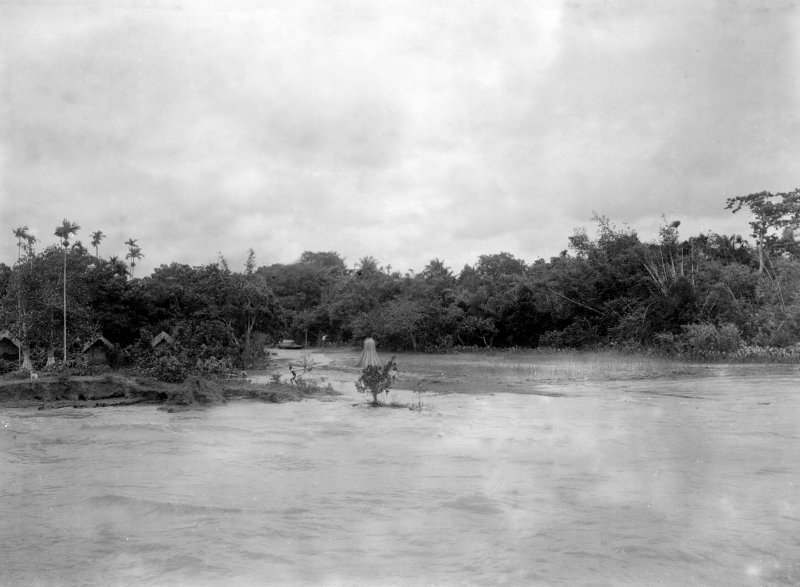 View from boat, with village obscured in trees. Unknown location, possibly Salt Lakes to east of Kolkata or south towards the Sundarbans to the south.