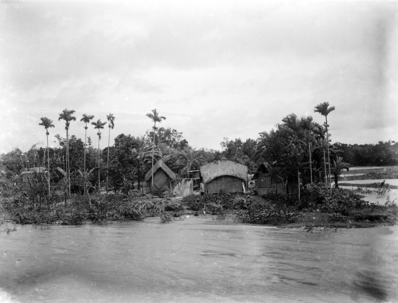 Bengal village, view taken from the water.  Unknown location, possibly Salt Lakes to east of Kolkata or south towards the Sundarbans.
